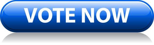 Del voto botón azul ahora libre illustration