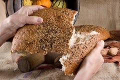 dela för bröd royaltyfri bild