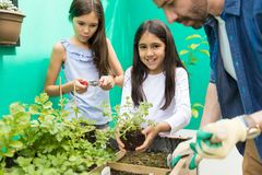 Dela Joy Of Gardening Together royaltyfri fotografi