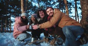 Delante de la cámara el grupo grande de étnico multi de los amigos disfruta del tiempo en un día de invierno en el bosque que beb metrajes