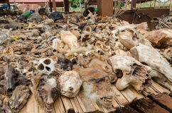 Delar av döda djur som erbjuds som böter och amuletter på utomhus- voodoofetisch, marknadsför i Benin Royaltyfri Foto