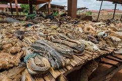Delar av döda djur som erbjuds som böter och amuletter på utomhus- voodoofetisch, marknadsför i Benin Arkivfoto
