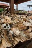 Delar av döda djur som erbjuds som böter och amuletter på utomhus- voodoofetisch, marknadsför i Benin Arkivbilder