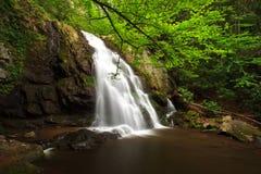 delar spruce vattenfallet fotografering för bildbyråer