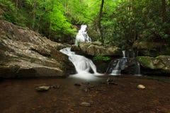 delar spruce vattenfallet royaltyfri fotografi