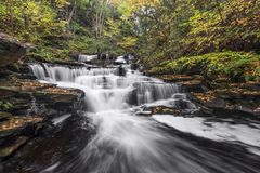 Delaware Falls Downstream - Ricketts Glen, Pennsylvania Stock Images