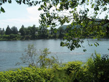 Delaware-Fluss 2 Stockfoto