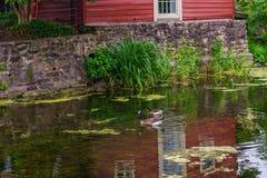 Delaware-Kanal-Leinpfad und Gans, historische neue Hoffnung, PA lizenzfreie stockfotografie