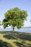 Delaware River Stock Images