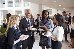 Delegates Networking During Conference Lunch Break Stock Image