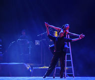 Deleitar com-se a identidade do sonho- do drama da dança do mistério-tango Imagem de Stock Royalty Free