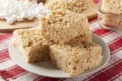 Deleite friável do arroz do marshmallow Fotos de Stock Royalty Free