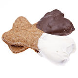 Deleites mergulhados chocolate do cão Imagem de Stock