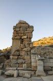Delen av fördärvar av Ephesus och katten - en lokalinvånare av den forntida staden. Arkivbilder