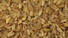 Deletreado, arroz y cebada almacen de metraje de vídeo