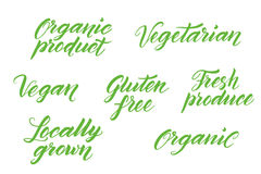 Deletreado sano dibujado mano de la comida Etiqueta, plantilla del logotipo Fotos de archivo libres de regalías