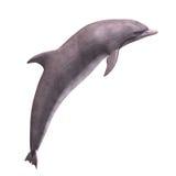 delfín 3D Imagenes de archivo