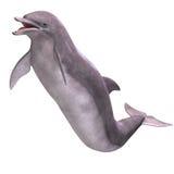 delfín 3D stock de ilustración