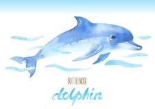 Delfín de Bottlenose Ejemplo dibujado mano de la acuarela del vector Foto de archivo libre de regalías