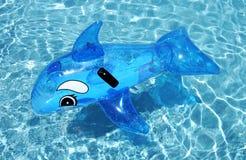 Delfín inflable en piscina azul fotografía de archivo libre de regalías