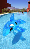 Delfín inflable en piscina azul Imagen de archivo