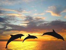 Delfínes Fotografía de archivo