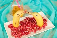 Delfínes con sabor a fruta Fotos de archivo