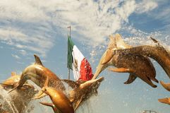 Delfínes de oro imagen de archivo libre de regalías
