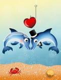 Delfínes en amor Imagenes de archivo