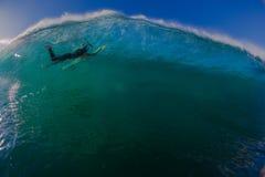 Delfínes sumergidos persona que practica surf de la onda Fotografía de archivo libre de regalías