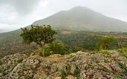 Delfi krajobraz. Obraz Royalty Free