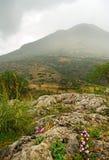 Delfi krajobraz. Zdjęcia Royalty Free