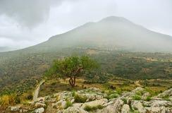 Delfi krajobraz. Zdjęcie Stock