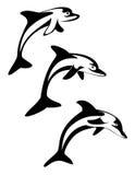 delfin Royaltyfri Bild