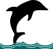 delfin Arkivbilder