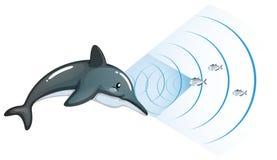 Delfin komunikuje z inną ryba royalty ilustracja