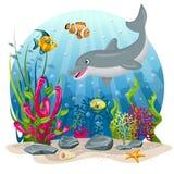 Delfin och fisk i havet Royaltyfria Foton