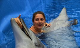 Delfin och flicka Arkivfoton