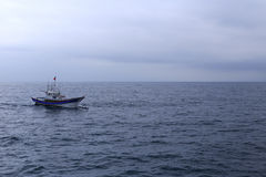 Delfin och träspringa för fartyg Arkivbild