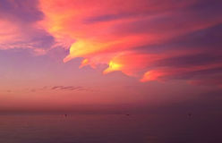 Delfin på den orange himlen över Röda havet Egypten royaltyfri fotografi