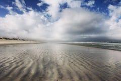 Delfin plaża Zdjęcie Stock