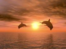 delfin två Arkivbilder