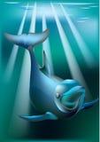 Delfin y rayos de soleado Fotografía de archivo libre de regalías