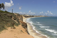 Delfin zatoczka - Natal Brazylia plaże zdjęcie royalty free