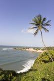 Delfin zatoczka - Natal Brazylia plaże fotografia royalty free