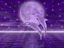 delfiner stock illustrationer