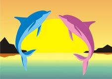 delfiner två Royaltyfria Foton