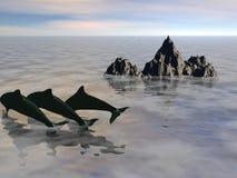 delfines Imagen de archivo libre de regalías
