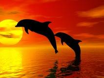 Delfini di salto Fotografie Stock Libere da Diritti
