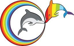 Delfini e Rainbow Fotografia Stock Libera da Diritti